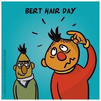 Bert hair day