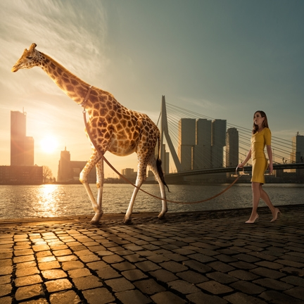 Walking The Giraffe