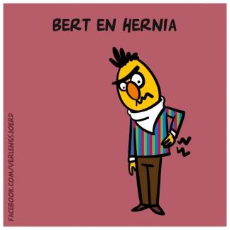 Bert en Hernia