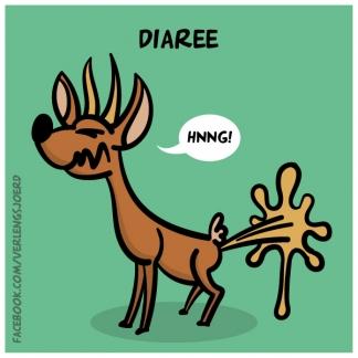 Diaree