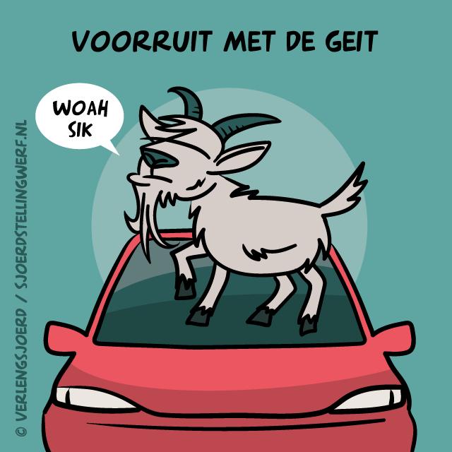 Voorruit met de geit