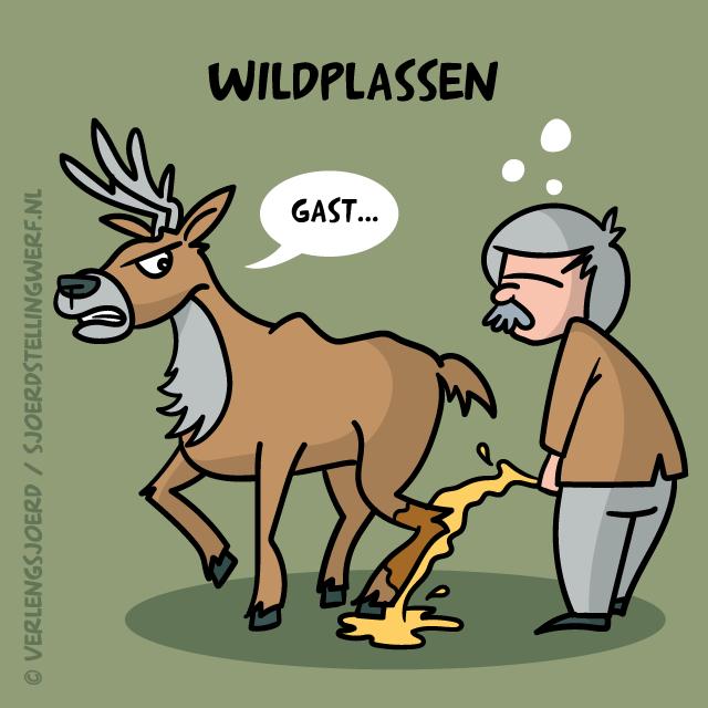 Wildplassen